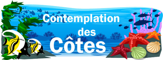 Contemplation des cotes illustration