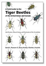 tiger beetles book