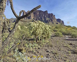 Desert virtual tour