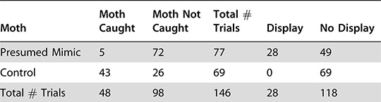 Table of moths caught and not caught by spiders, showing that Brenthia moths are mimicking spiders and avoiding attack.