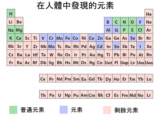 Periodic Table illustration of elements found in human body