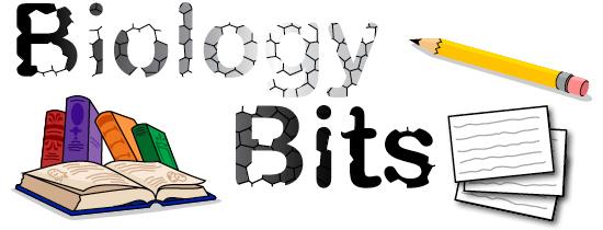 Biology bits
