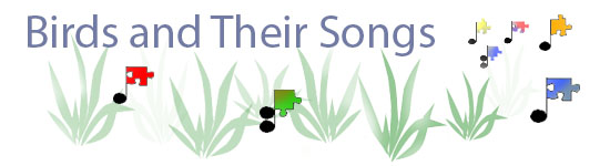 Bird Song Subheader