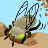 Digger Bee Icon
