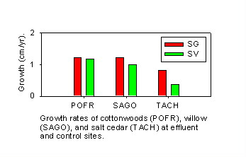 Tree growth rates 1