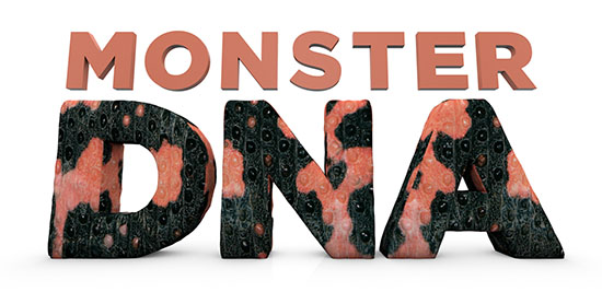 Monster DNA
