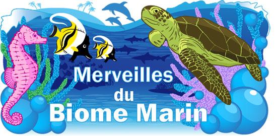 Merveilles du Biome Marin