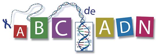 ABC de ADN