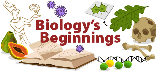 History of biology illustration