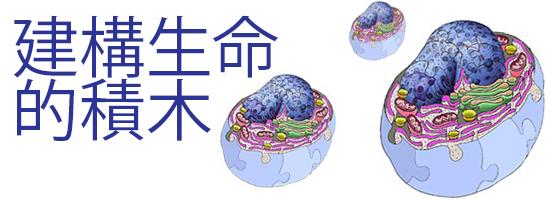 細胞生物學