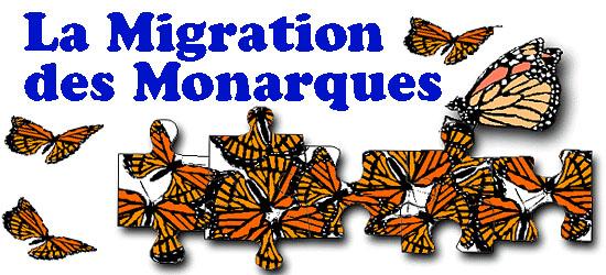 Migration des Monarques