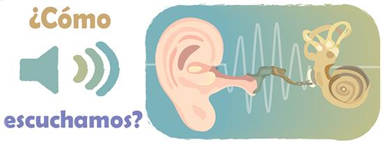 Como escuchamos?