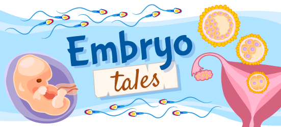 """An illustration for """"embryo tales"""" stories, that features an embryo, sperm, follicles, and a uterus"""