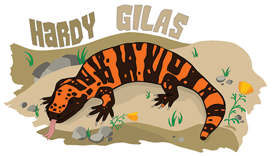 Gila monster story illustration