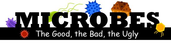 Microbes Comic Cook
