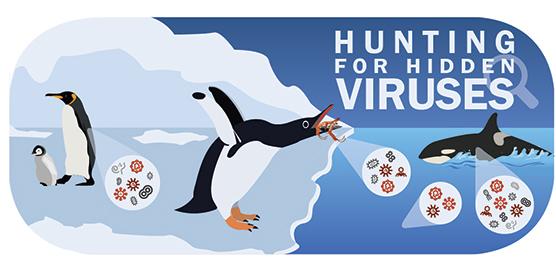 Hunting for Hidden Viruses