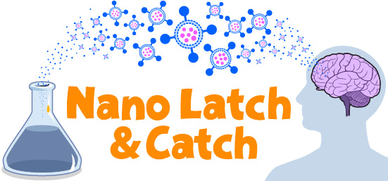 Nano Latch and Catch