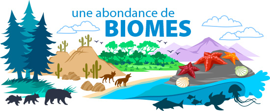 Une Abondance de Biomes