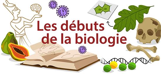 Les debuts de la biologie