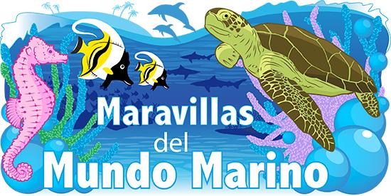 Maravillas del mundo marino