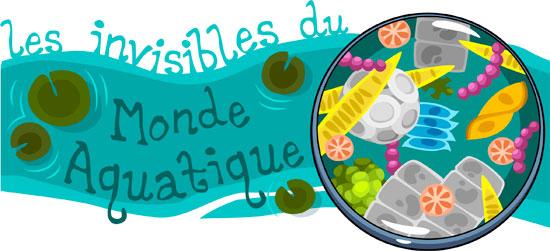 Les invisibles du monde aquatique
