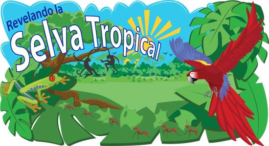 Revelando la Selva Tropical