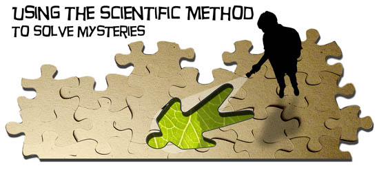 Using the Scientific Method to Solve Mysteries
