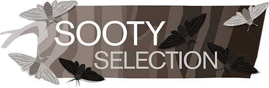 Sooty Selection