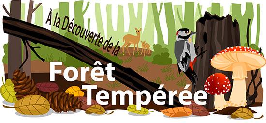 À la découverte de la Forêt Tempérée