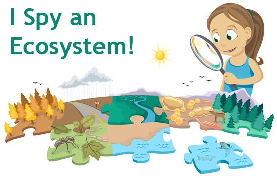 Ecosystem | ASU - Ask A Biologist