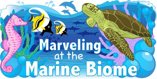 Coastal and Open Ocean Biomes   ASU - Ask A Biologist