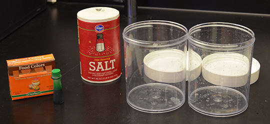 Fresh And Salt Water Experiment Ask A Biologist