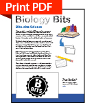 Biology Bits Download Print PDF