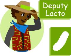 Lacto and E  coli   Ask A Biologist