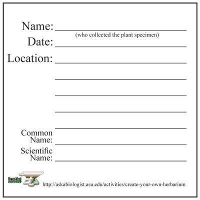 Step 7: Labelling your plants | ASU - Ask A Biologist