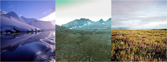 Three tundras