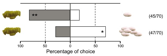 Figure 3 Percentage of Choice