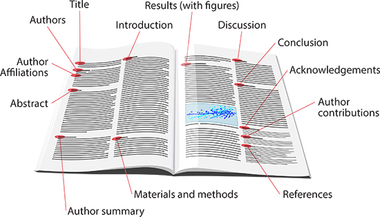 components of a scientific research paper