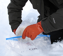 bagging ice core