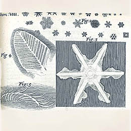 Robert Hooke Snowflake Illustration