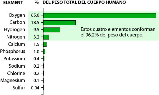 Elements in Human Body by Percent