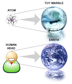 Comparing size of atom to the human head