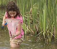 child with net in lake