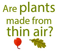 Are plants made from thin air?