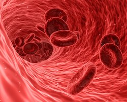Illustration of blood cells flowing through a blood vessel