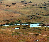 Kenya savanna with water