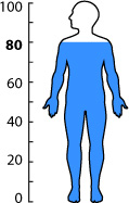Human's bodies are roughly 80% water.