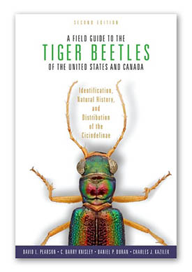 Tiger Beetle Guide - Second Edition
