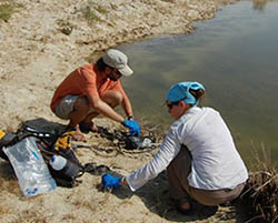 Jess Corman and Jorge Ramos collecting microbes