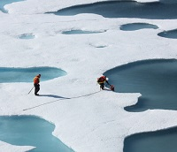 Biologists on ice sheets